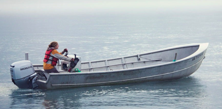 Fishing in seldovia for Alaska out of state fishing license