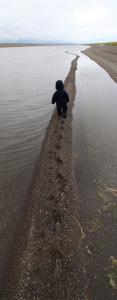Katmai on beach