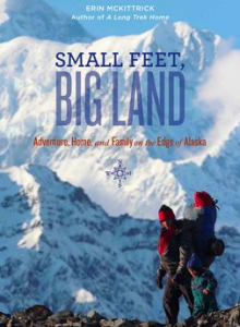 SmallFeetBigLand