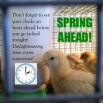 Spring Has Sprung! Set Clocks AHEAD tonight!
