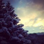 39_SeldoviaPics_TaylorH_forSeldovia.com_snow2.jpg