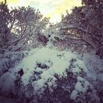 40_SeldoviaPics_TaylorH_forSeldovia.com_snow3.jpg