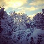 42_SeldoviaPics_TaylorH_forSeldovia.com_snow5.jpg