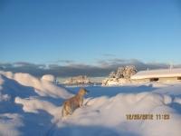 7_121225_ChristmasDayInSeldovia-jfchissus_IMG_5378.jpg