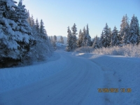 8_121225_ChristmasDayInSeldovia-jfchissus_IMG_5385.jpg