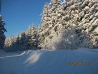 11_121225_ChristmasDayInSeldovia-jfchissus_IMG_5405.jpg