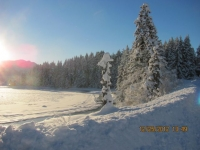 15_121225_ChristmasDayInSeldovia-jfchissus_IMG_5417.jpg