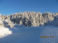 16_121225_ChristmasDayInSeldovia-jfchissus_IMG_5418.jpg