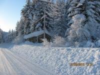18_121225_ChristmasDayInSeldovia-jfchissus_IMG_5420.jpg