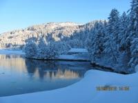 35_121225_ChristmasDayInSeldovia-jfchissus_IMG_5451.jpg