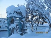 44_121225_ChristmasDayInSeldovia-jfchissus_IMG_5466.jpg