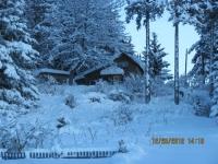 72_121225_ChristmasDayInSeldovia-jfchissus_IMG_5499.jpg