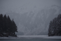 View the album Byron McCord Tours Seldovia on Snowy Day